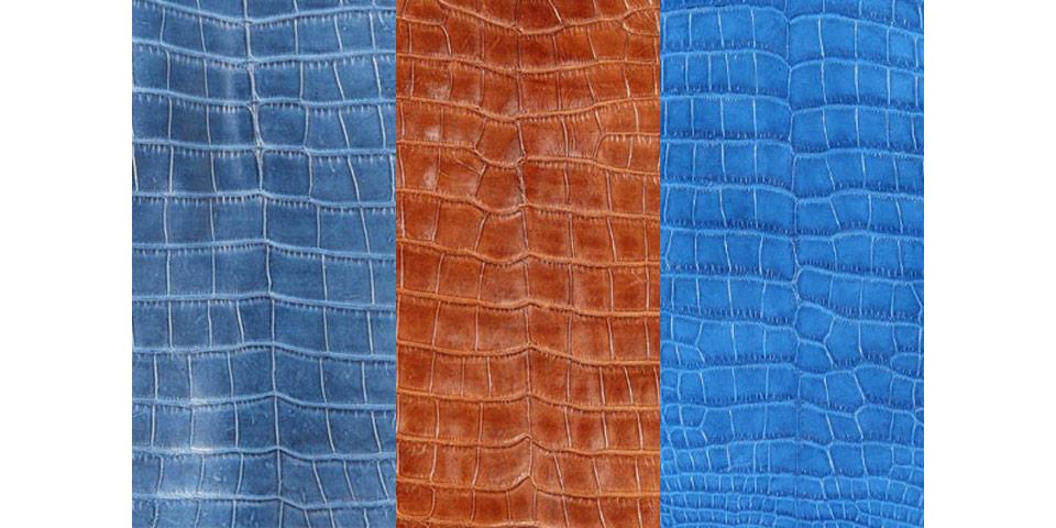 Alligator Leather Exotic Skin