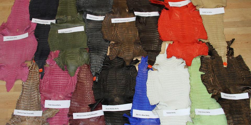 Caiman Crocodile Skins